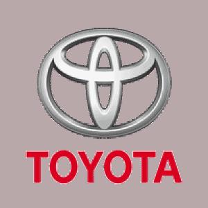 Haydee Antezana - Clients - Toyota